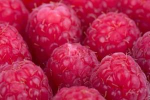 berries - raspberry close up