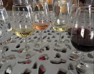 1. Wine tasting